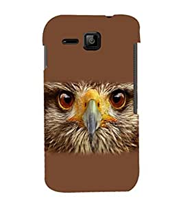 printtech Eagle Look Back Case Cover for Micromax Bolt S301