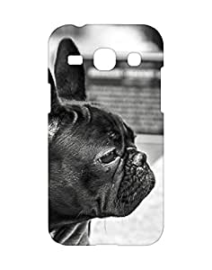 Mobifry Back case cover for Samsung Galaxy Core Plus Mobile (Printed design)