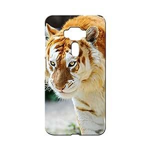BLUEDIO Designer Printed Back case cover for Asus Zenfone 3 - G5254