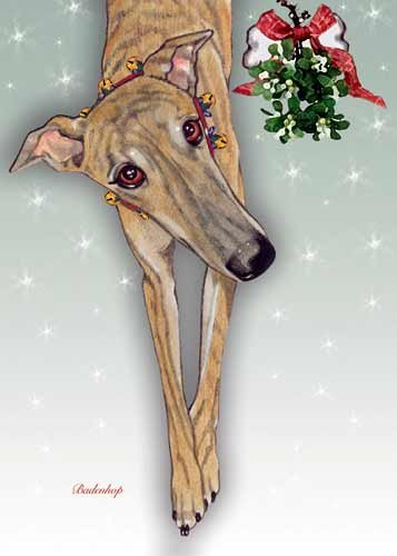 greyhound-christmas-cards-brindle-10-holiday-cards-with-red-envelopes-adorable