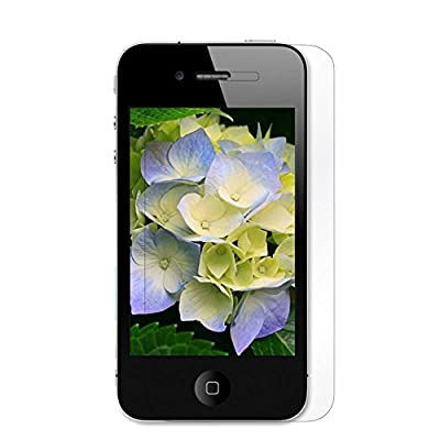 DTOL For Apple iPhone 4/4S (Matte) Clear Screen Protectors Film by ONEFDBK