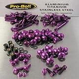 Aluminium Full Monty Bolt Kit 1250 Bandit 07-09 Purple