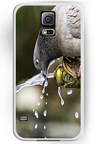 Sprawl Funny Cute Wild Animal Style Hard Plastic Skin Cover Case Shell For Samsung Galaxy S5 / Galaxy Sv -- Pigeon Drink Water