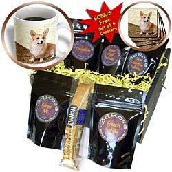 Dogs Corgi - Pembroke Welsh Corgi - Coffee Gift Baskets - Coffee Gift Basket