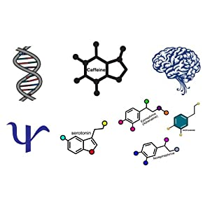 Amazon.com: Psychology Temporary Tattoo Variety Pack: Industrial
