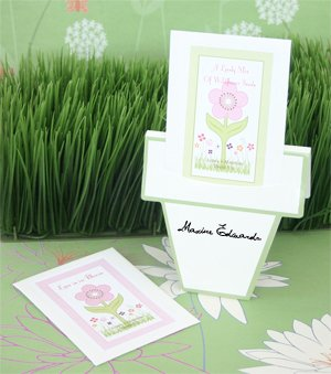 Flowers in Bloom Seed Packets with Flower Pot Card - Baby Shower Gifts & Wedding Favors (Set of 48)