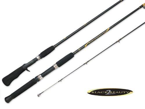 Black Beauty Spincast Surf Rod, 2x10-Feet