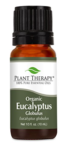 Organic Eucalyptus Essential Oil. 10 ml. 100% Pure, Undiluted, Therapeutic Grade. Review