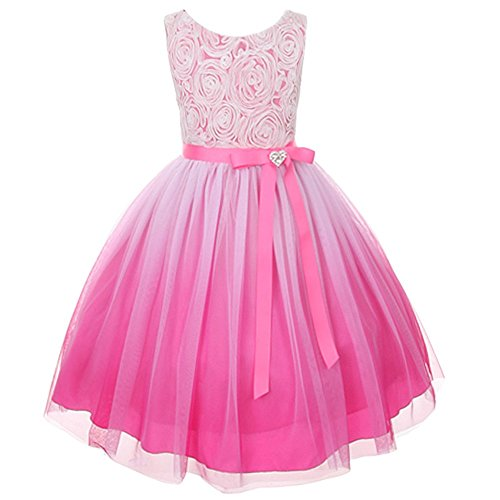 Fuchsia Ombre Rosette Special Occasion Flower Girls Dress Christmas Wedding 2-14