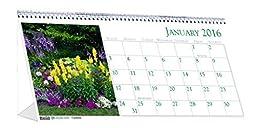 House of Doolittle 2016 Monthly Desktop Tent Calendar, 8.5\