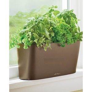 windowsill self watering planter espresso window sill planters for herbs. Black Bedroom Furniture Sets. Home Design Ideas