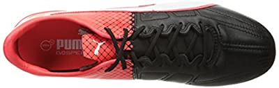 PUMA Men's Evospeed 1.5 Lth FG Soccer Shoe