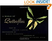 A World Of Butterflies