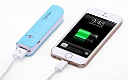 Nextech 2800mAH Power Bank with Torch Light and Micro USB Cable (Blue)
