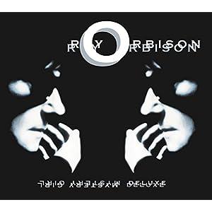 ミステリー・ガール~25周年記念デラックス・エディション(DVD付)