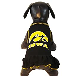 NCAA Iowa Hawkeyes Cheerleader Dog Dress (Team Color, Small)