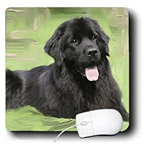 newfoundland breed dog mouse pad