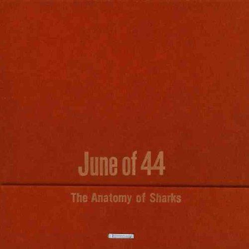 The Anatomy of Sharks