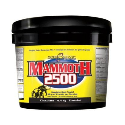 Interactive Nutrition Mammoth 2500 Chocolate 4400 g -- Weight Gain Supplement for Hard Gainers