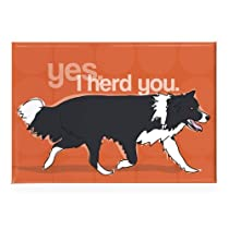 Border Collie - Yes I Herd You - Pop Doggie Refrigerator Magnets with Funny Sayings, Border Collie Gifts