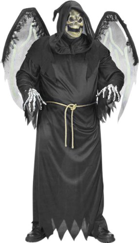Men's Winged Reaper Halloween Costume (Size:48-52)