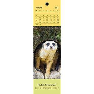 Schön, dass es dich gibt! 2017: Lesezeichenkalender