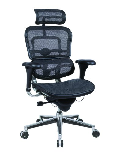 ErgoHuman Executive Chair with Headrest in Black
