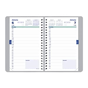 Brownline Academic Daily Planner, August to July, 8-Inch x 5-Inch (CA201.FASX)