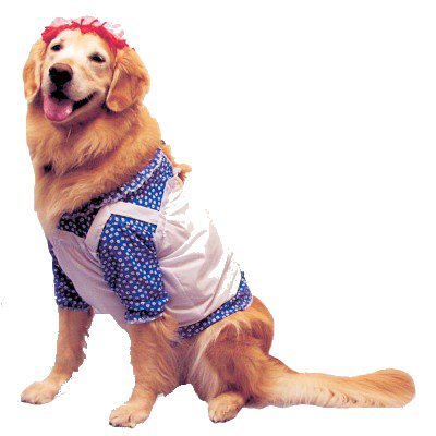 Pet Raggedy Ann Dog Costume For Small Dogs