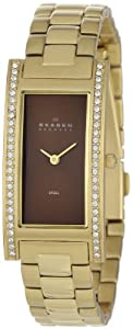 Skagen Steel Links Womens Watch