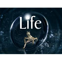 Life Season 1