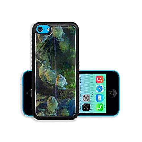 Liili Premium Apple iPhone 5C Aluminum Backplate Bumper Snap Case 2015 08 23 IMG 3778 Image 20845002372 (Lightning Foto compare prices)