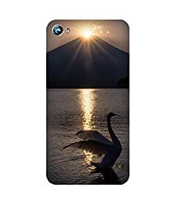 Flapping Swan Micromax Canvas Fire 4 A107 Case