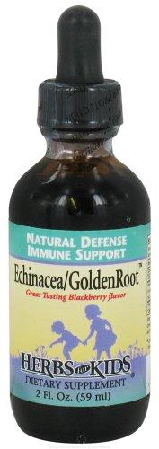 Herbs For Kids Echinacea GoldenRoot Blackberry - 2 fl oz- Pack of 2 2 Ounce Blackberry
