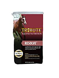 Kalmbach Feeds Tribute Resolve Food for Horses, 50 lb