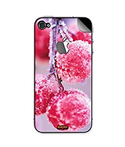 indiaspride SKIN STICKER FOR APPLE I PHONE 5s with logo