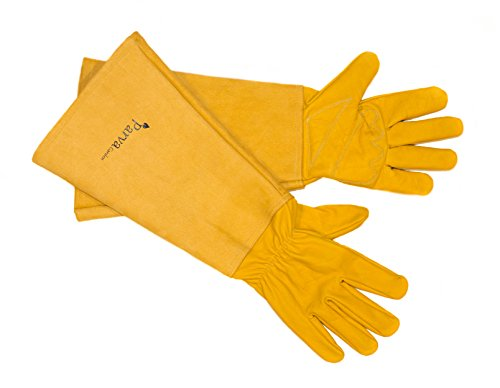 Thorn Proof Gloves Perfect for Pruning Rose Garden, Blackberry Bushes, and Prickly Plants. Leather Gloves with Canvas Gauntlet, Long Elbow Length Gardening Gloves for Men & Women (Medium) (Puncture Proof Work Gloves compare prices)
