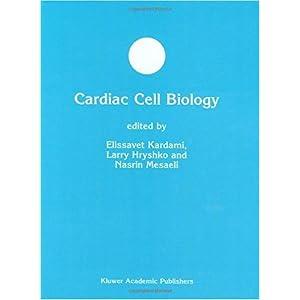 【クリックで詳細表示】Cardiac Cell Biology (Developments in Molecular and Cellular Biochemistry) [ハードカバー]