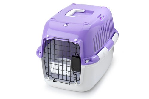 Europet Bernina Explorer 50 Sport Edition Transport/Box, 49 by 32 by 32cm, Purple