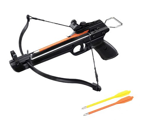 NEW Hand Held Hunting Archery 50LB PISTOL CROSSBOW Gun