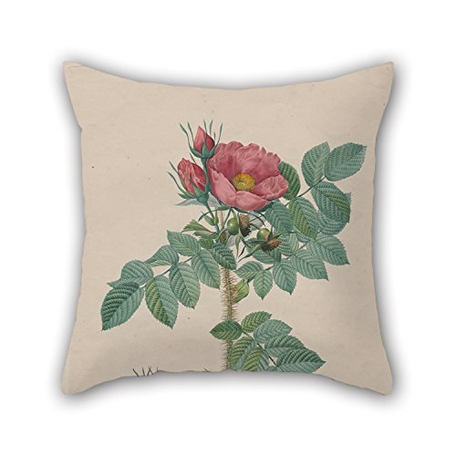 Loveloveu 20 X 20 Inches / 50 By 50 Cm Oil Painting Chapuy, After Pierre- Joseph Redouté - Kamtschatka Rose (Rosa Kamtschatica), From Redouté, ' Les Roses', Paris, 1817�824) Pillow Shams,2 Sid (Fuzzy Tiger Steering Wheel Cover compare prices)
