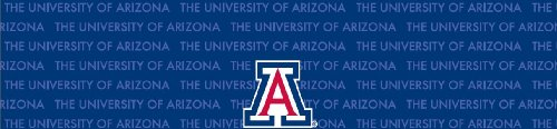 Arizona Wildcats Team Auto Visor Decal