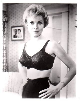 Photo D3125 Janet Leigh Busty Black Bra Psycho At Amazon S