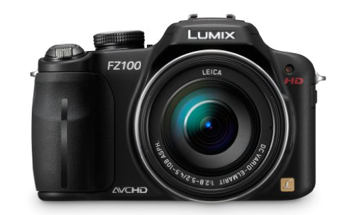 Panasonic Lumix DMC-FZ100 is one of the Best Digital Cameras for Wildlife Photos with Long zoom lens (>6x)