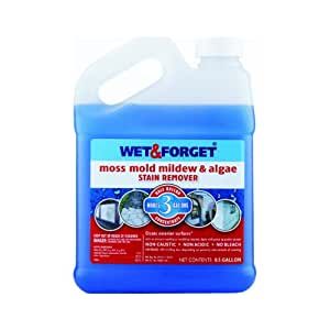 Amazon Com Wet And Forget 800003 Wet And Forget Moss