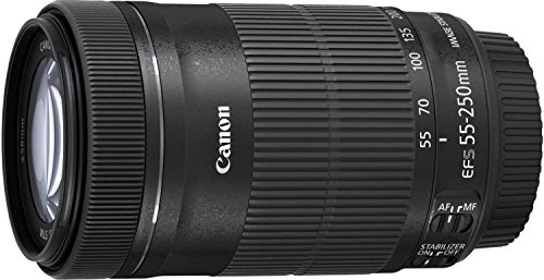 Canon-EF-S55-250ISSTM-Teleobiettivo-Compatto-55-250-mm-F4-56-IS-STM-Nero