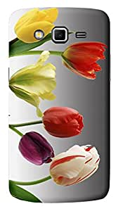 TrilMil Printed Designer Mobile Case Back Cover For Samsung Galaxy Grand 2 / GRAND2 / SM-G7106 / G7102 / G7106