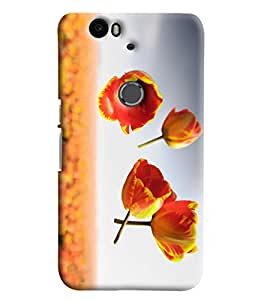 Blue Throat Four Flowers Printed Designer Back Cover/Case For Huawei Google Nexus 6P