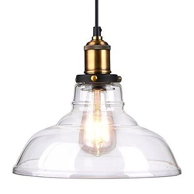 Pendant Lighting Glass Shade,Oak Leaf Vintage Industrial Edison Glass Ceiling Pendant Lighting,Mounted Hanging Ceiling Chandelier Fixture