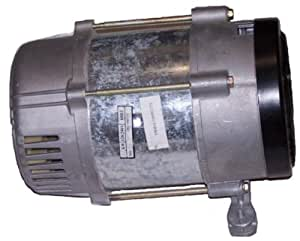 5000 Watt Generator Head Replacement